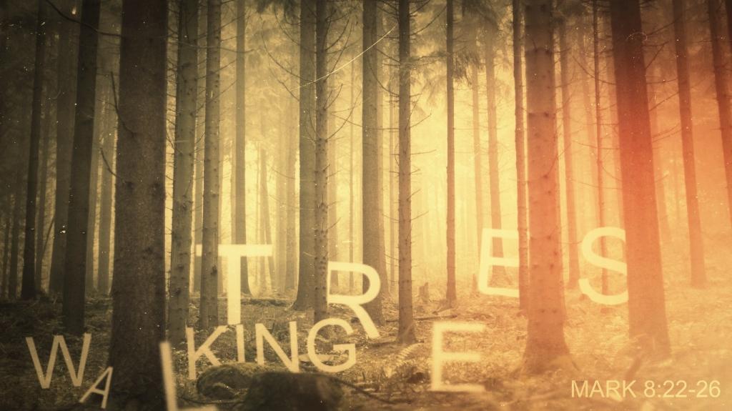 Walking_trees